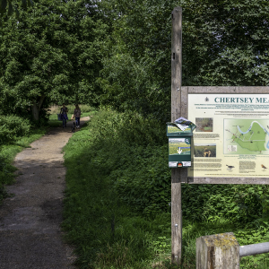 Chertsey Meads