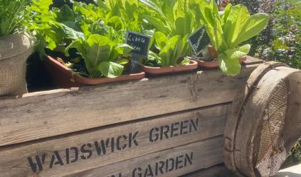 Wadswick Green gardens